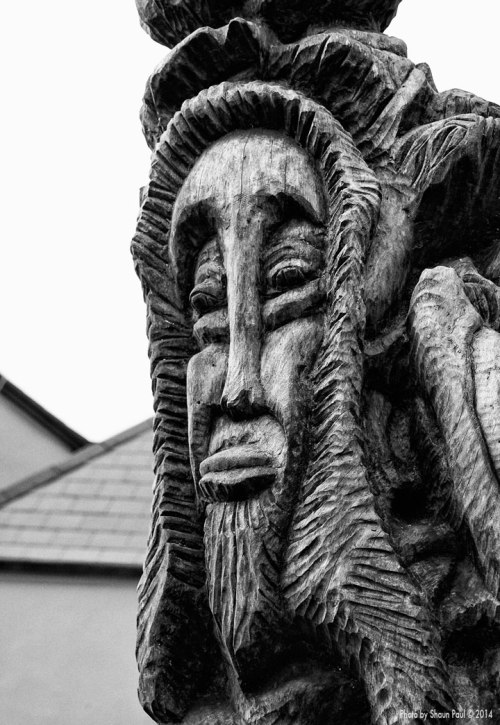 One face among the many that adorn the 'Trinity Tree' in the churchyard of St. Mary's in Dingle, Co. Kerry.  Carved by Juan Carlos Lizana Carreño.