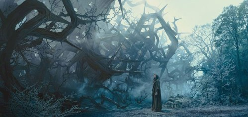 Maleficent Thorn Wall